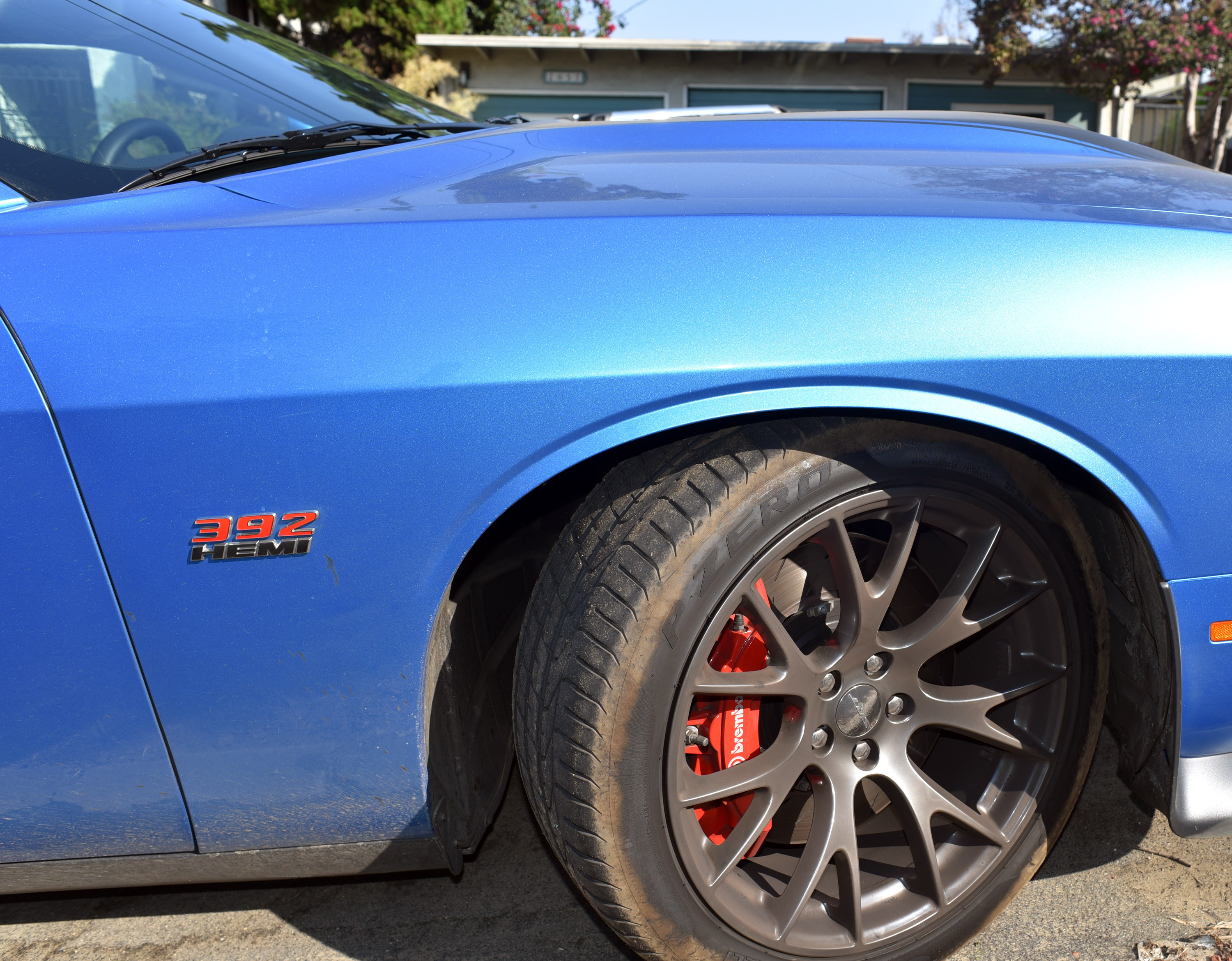 dsc_2518-cropped-challenger