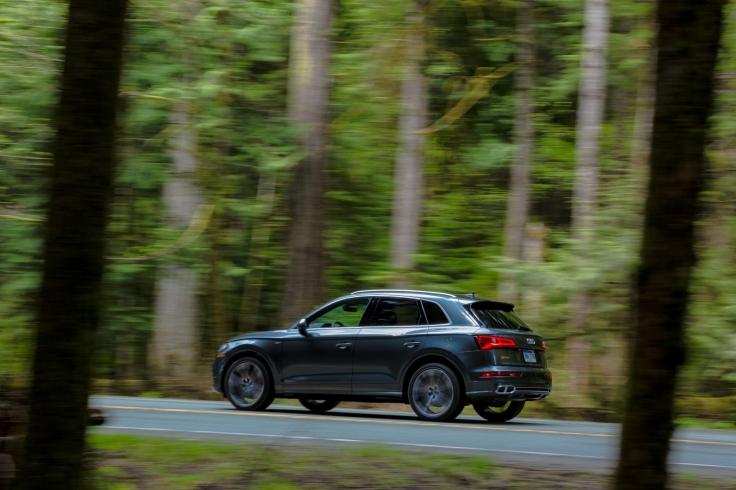Small-2018-Audi-SQ5-2818